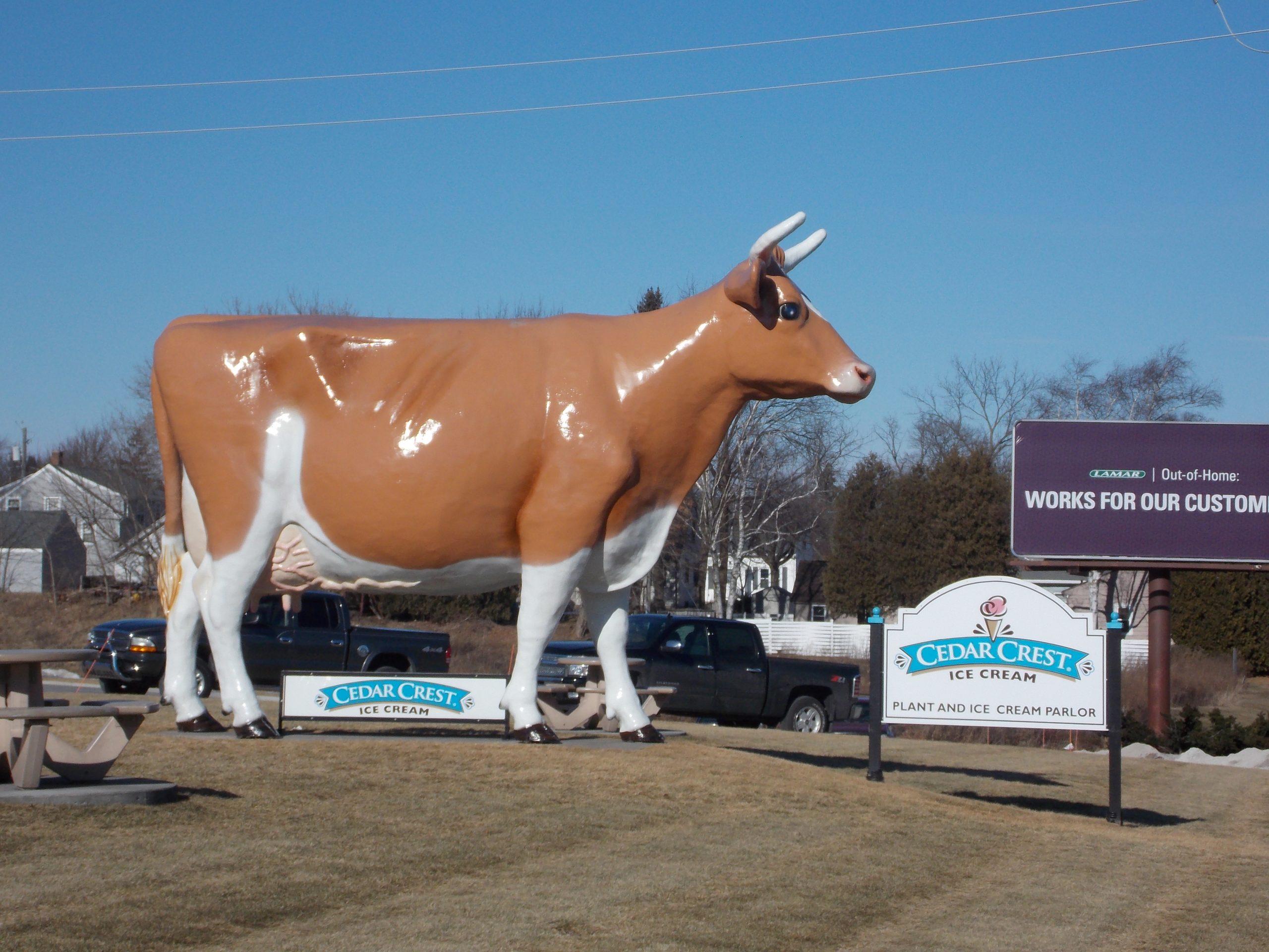 Cedar Crest - Cow.JPG
